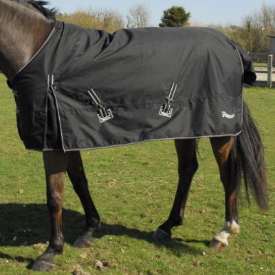 Rhinegold Light Torrent Turnout Black on a horse in a field