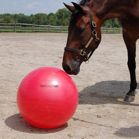 Horsemans Pride Jolly Ball