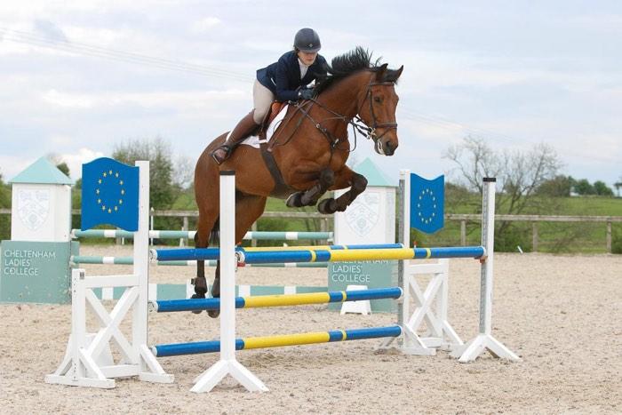 Athena Show Jumping
