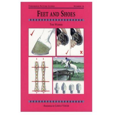 Feet & Shoes 16