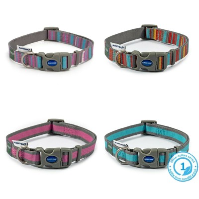 Ancol recycled dog collars
