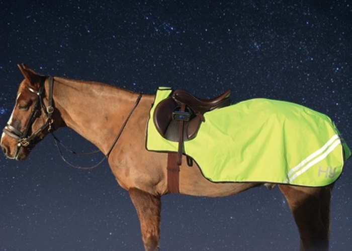 Horse wearing Hi Visibility Sheet